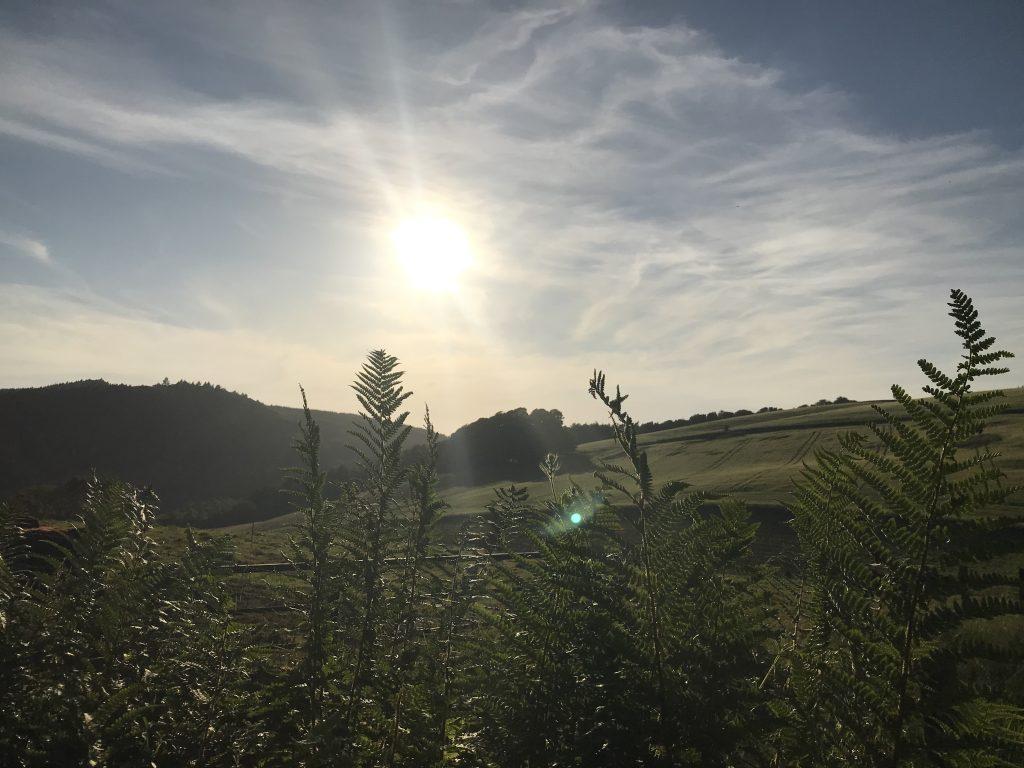 Near Norman's Law, Fife Scotland
